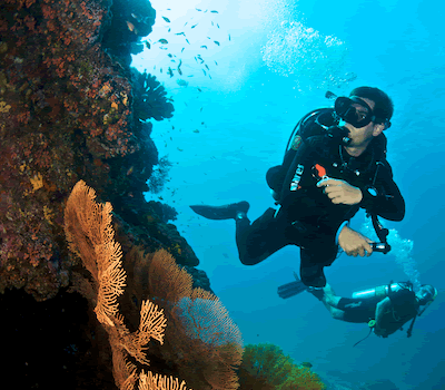 Life insurance for divers